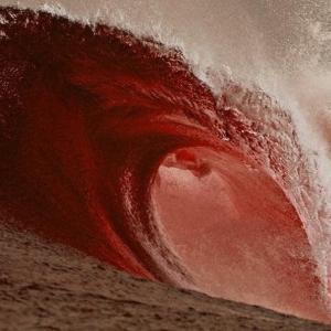 あと2〜3日で大きな赤い波が押し寄せて来るよ。MARI-LOVE-USA