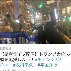 11/25 デモ&街宣の様子! チェンジジャパン、及川幸久さん与国秀行さん