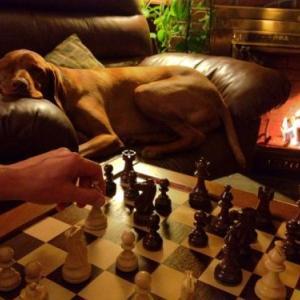 【 結論!?】チェスって中二病だったのか!?