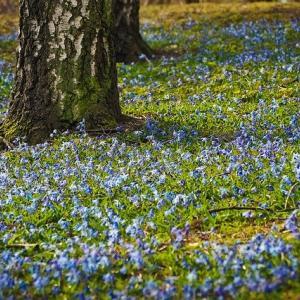 春の陽気を、心にも取り入れた時は。