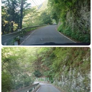 JALどこかにマイルで徳島へ(3)祖谷の道は狭かった!ひの字渓谷・小便小僧・大歩危・脇町うだつの町並み