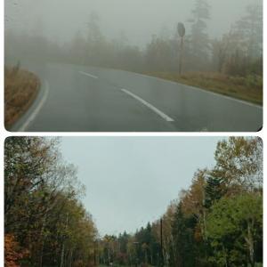 富良野ドライブ 紅葉の北海道へ(3)
