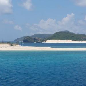 サンゴの海 座間味島(慶良間諸島)