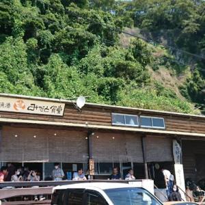 湯河原までドライブ(2)みなと食堂(福浦漁港)