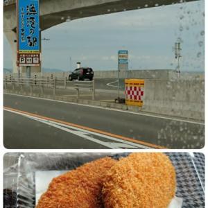 箱根駅伝の国道1号線へ