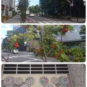 松本城下町を歩く(5)