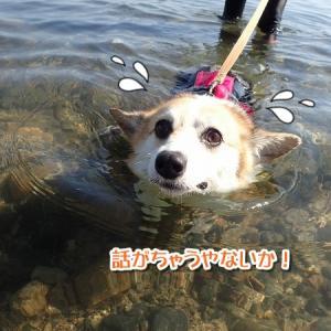 【驚愕】おやつに釣られて…!