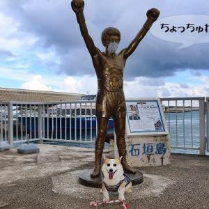 日本のヒーロー★石垣島の大スターに会いに行ってきた!