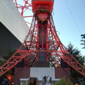 クリスマスマーケット -東京タワー広場-