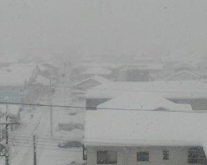 大雪はクリリンのせいじゃない!!