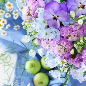 春の可憐な花達