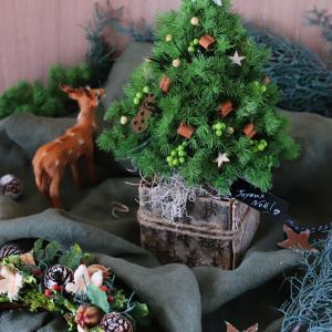 クリスマスツリーをプリザーブドで