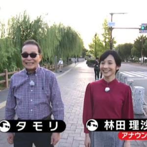 ブラタモリ 12月14日放送~姫路城①