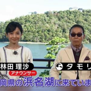 ブラタモリ 1月18日放送~浜名湖①