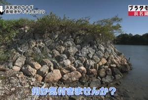 ブラタモリ 1月18日放送~浜名湖②