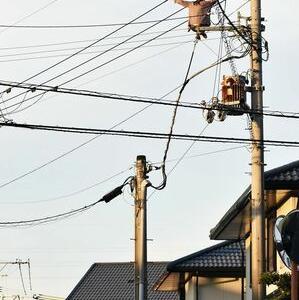 仕事年収 - 【悲報】女さん、電柱に登り電線を移動 捕獲のため周辺一時停電