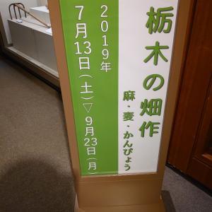 宇都宮市 栃木県立博物館 3 栃木県の畑作。