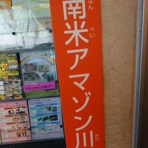 大田原市 なかがわ水遊園(おもしろ魚館) 2 海外の魚など。