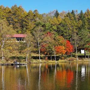 ビーナスライン(女神湖)
