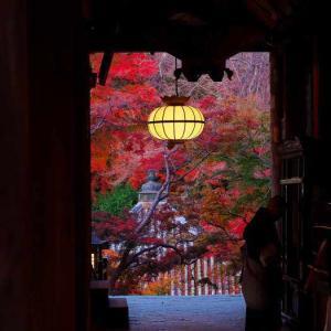 長谷寺の紅葉②