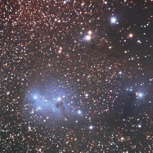 今年は急がずゆっくりとカタツムリが如く IC2169
