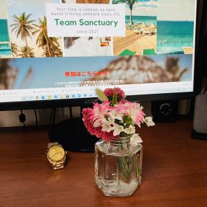 「Bloomee LIFE」ポストにお花が届く新体験!お花の定期便を購入してみた!