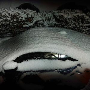 12年ぶりの積雪