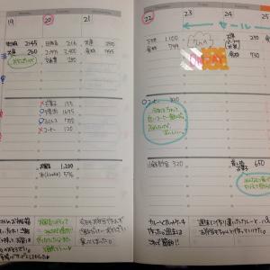5/19~5/25の家計簿