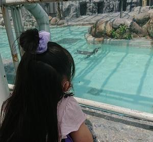 今年初円山動物園に行ってきました!