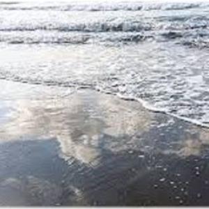 八月の濡れた砂・九月の言葉