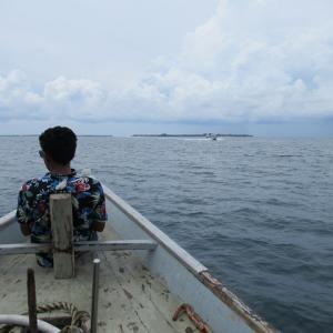ギリ・メノで海ガメと泳ぐ