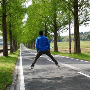 日本一周6日目 滋賀県 余呉湖とメタセコイア並木