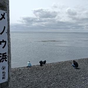 夫婦で日本一周 礼文島の観光地をウロウロ