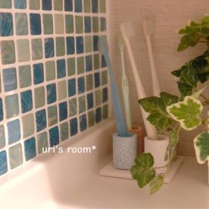 洗面所の歯ブラシ立て、その後。それからポチレポラスト〜