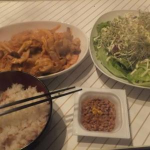 サラダ定食(豚キムチ付)