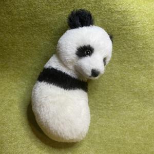 パンダの歩み・その4
