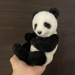 パンダの歩み・その6