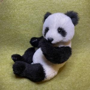 パンダちゃん完成しました(パンダの歩み・その7)