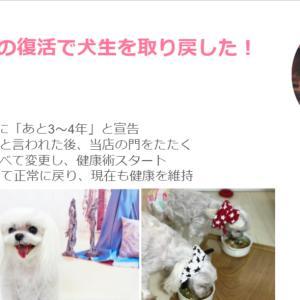 """愛犬アイテム選びは""""店員さんの提案""""もセットにしてみよう!"""