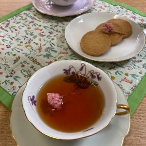 桜の紅茶再び