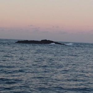 串本大島へ磯釣り