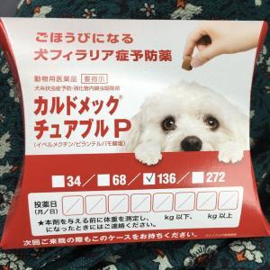 【号外】48時間でコロナ根絶できる治療薬を発見!!日本人が開発した米国製の「イベルメクチン」