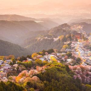 【朗報】ブラジル人MF…日本の美しさに感動wwwwwwww
