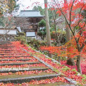 玉雲寺(京都府京丹波町) 紅葉