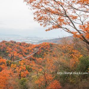 星のブランコ(大阪府交野市) オレンジ色の夢をみそうw