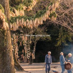円福寺 大根鉢