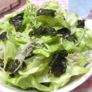調味料2つで感動の美味しさ♪ レタスと海苔じゃこのやみつきサラダ