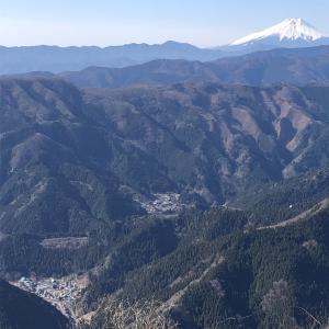 move your body 上養沢から大岳山へ等