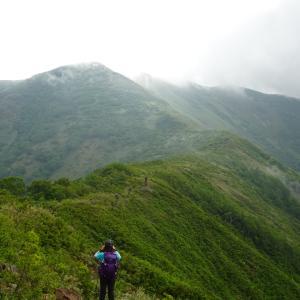 女流登山家の妻と花の百名山、平標山の生き物に逢いに行きました