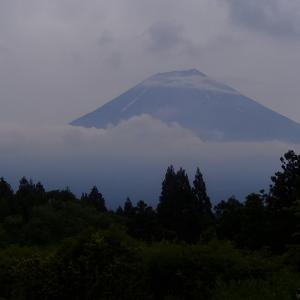 富士の麓にアマゴを求めて